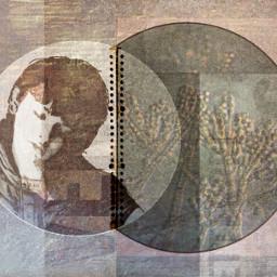 mold stillness collage
