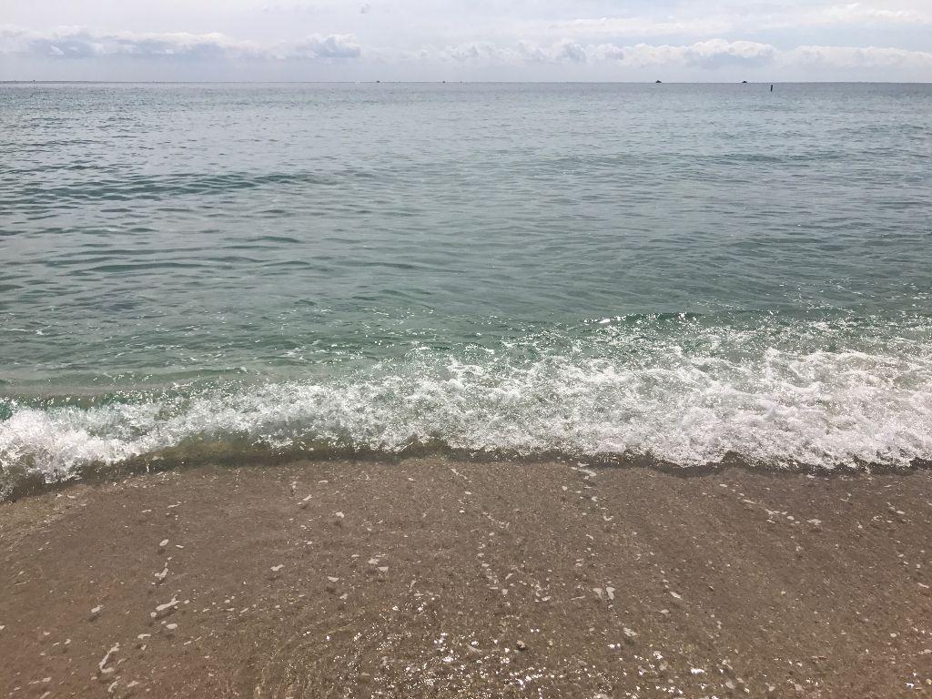 #water #sea #ocean #shore #swim #beach #sand #wave #saltwater #atlanticocean #florida #fortlauderdale