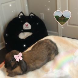 bunny cottagecore angelcore babycore kawaii freetoedit