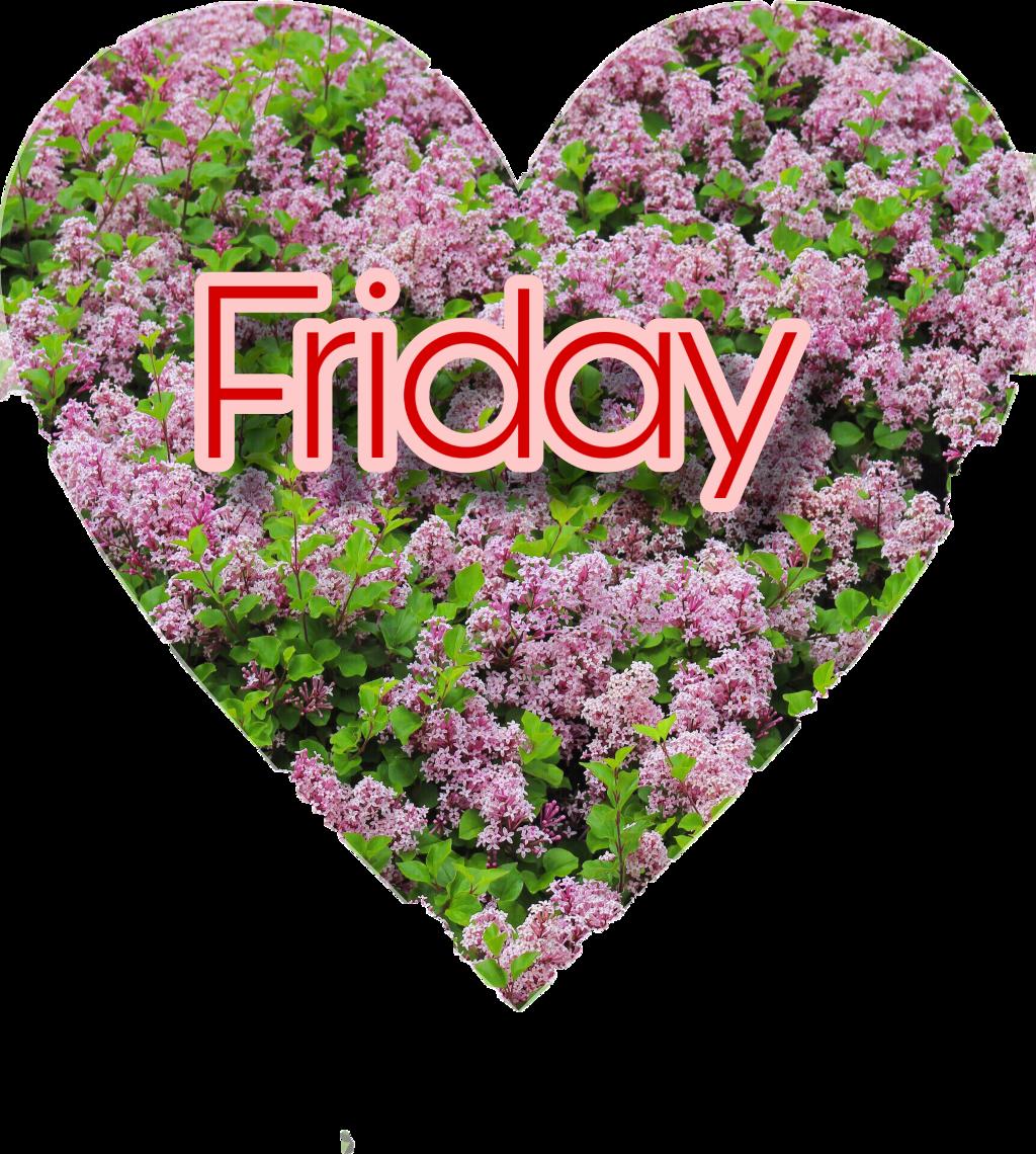 #friday #freetoedit
