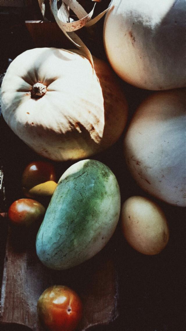 #freetoedit  #myphoto  #myphonecam  #pumpkin #fruits #picsartedit  #picsart #picsarteffects  @picsart