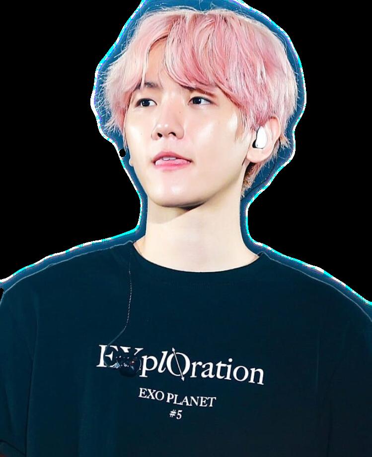 #interesting #exo #baekhyun #exobaekhyun #korea #EXplOration #exol #pink #freetoedit