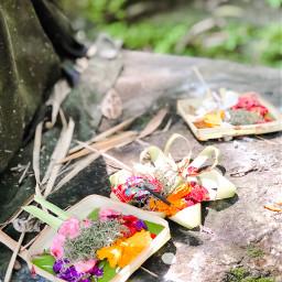 chanangsari bali indonesia travel ubud freetoedit