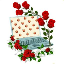 freetoedit ordinateur rose ircpeachesallaround peachesallaround