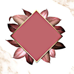 freetoedit pink mauve gold frame