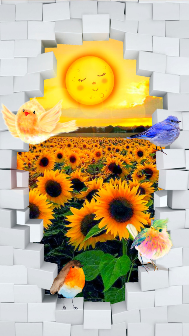 #freetoedit #fairytales #nature #landscape #sunflowers #birds #brokenwall #3deffect #cute #colorful #myedit #madewithpicsart