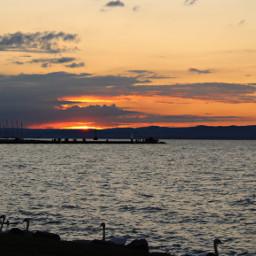 balaton summer sunset beautiful