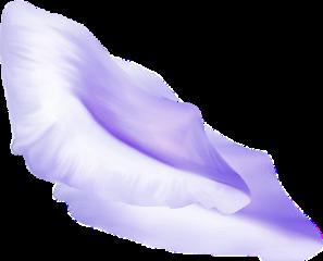 ftestickers flower petal reflection purple freetoedit
