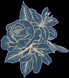 flores tumblr kawaii fanartofkai ircfanartofkai freetoedit