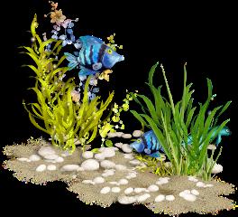 ladymc sea seaworld fish tube freetoedit