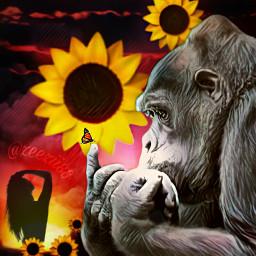 freetoedit gorila mariposa naturaleza mundosalvaje srcsunflowerselfie