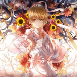 srcsunflowerselfie sunflowerselfie noragamiyukine freetoedit