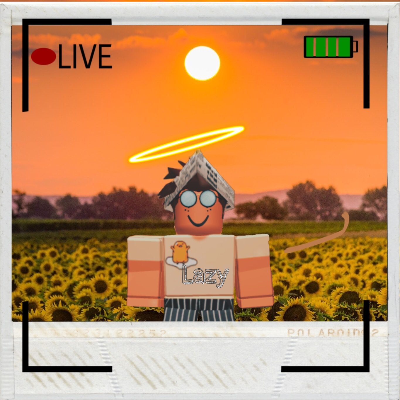 Roblox Profile Picture Sunflower Roblox Sunflower Aesthetic Robloxian Image By Zachhx
