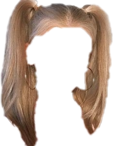 pigtails freetoedit