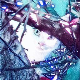 freetoedit galaxymagiceffect remixedcollection remixed