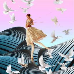 freetoedit tauben birds girl balarina