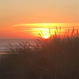 sunset pnw beach