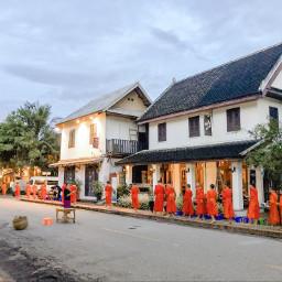 laos luangprabang monks freetoedit