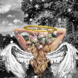 freetoedit angel angelcrown angelwings cutegirl