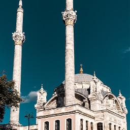 turkish turkey musque white sky freetoedit