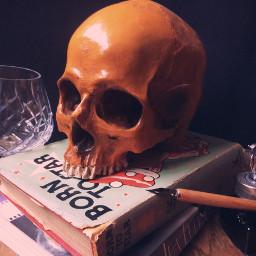 skull book books skullhead glass freetoedit