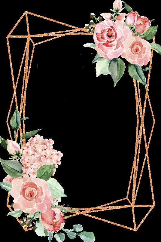 watercolor flowers frame geometric shapes geometricshap