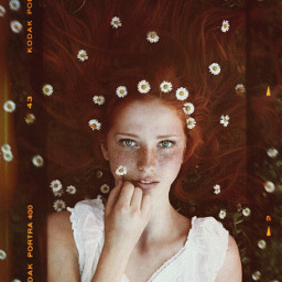 freetoedit red daisies flowers girl