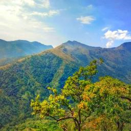 naturephotography mountain colorful trees freetoedit