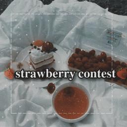 taestrawberrycontest contest strawberry firstcontest contests