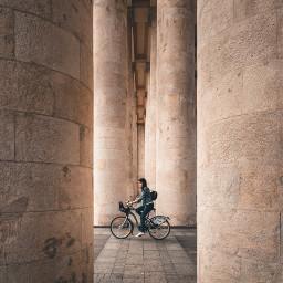 people bicycle freetoedit