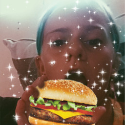 hamburger freetoedit