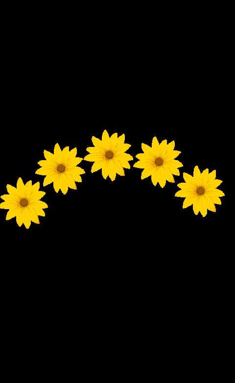 #crown #cool😎 #flowers #sticker #tumblr #aesthetic #cute #pretty #awesome #lol @xrileymaymikey