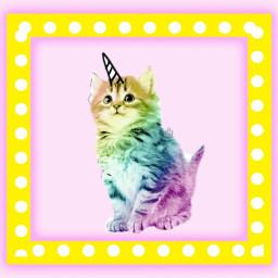 freetoedit rainbow kitty unicorn