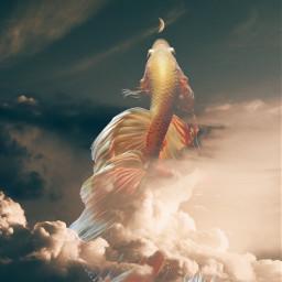 freetoedit fantasy art fish sky