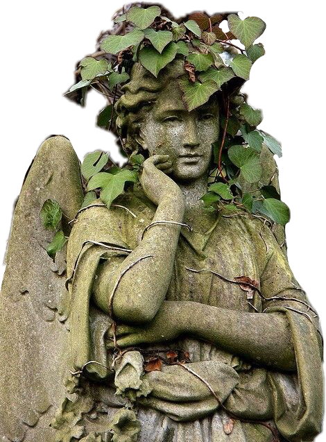 #ivy #ruins #tumblraesthetic #old #cemetery #weepingangels #wings #religion #death #statue #stonework