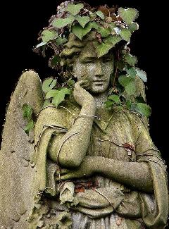 ivy ruins tumblraesthetic old cemetery freetoedit