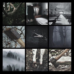 woods creepy spooky scary wiccan