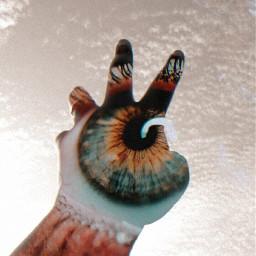 freetoedit doubleexposure myphoto myedit myhand