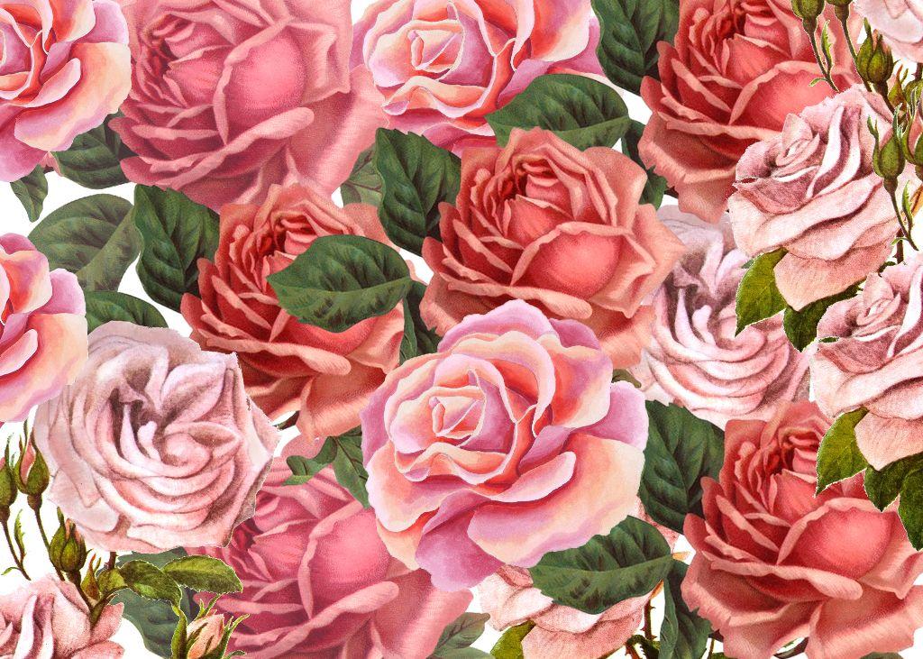 #vintage #flower #flowers #background #backgrounds #freetoedit