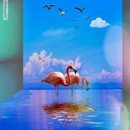 fantasyart madewithpicsart picsarttools editedbyme colorful freetoedit