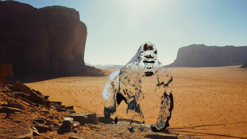 out of the zone and out of the zone of others' expectations.  𝘴𝘰𝘭𝘰 𝘵𝘳𝘢𝘷𝘦𝘭  #travel #jordan #gorilla #wild #animal #photography #surreal #edit #myedit