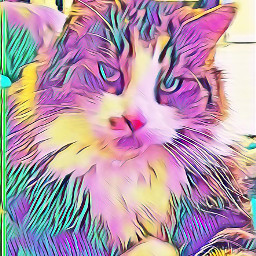 freetoedit remixit cat tabbycat