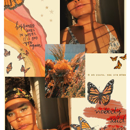 freetoedit floatlikeabutterfly orange aesthetic