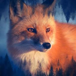 freetoedit ecgiantanimals giantanimals fox