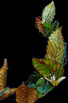 naturephotography autumnleaves autumncolors autumn2019 freetoedit scautumnleaves