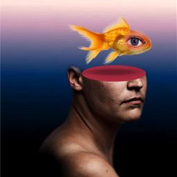 freetoedit eye fish myedit surrealart