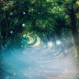 forest magical mystical fairies indiart01 freetoedit