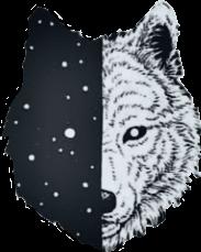 wolf wolves lupi lupo wild freetoedit