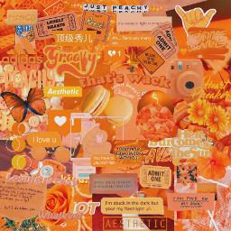orangeaesthetic orange aestheticboard stickers orangestickers freetoedit