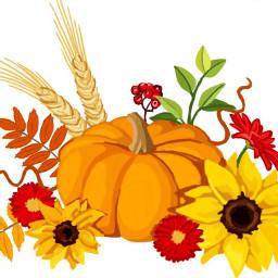mydrawing mypainting pumpkin sunflower fall dcautumn